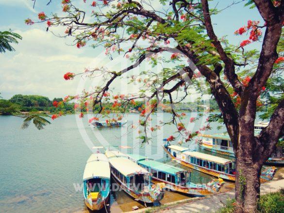 Hình ảnh ca Huế trên sông Hương